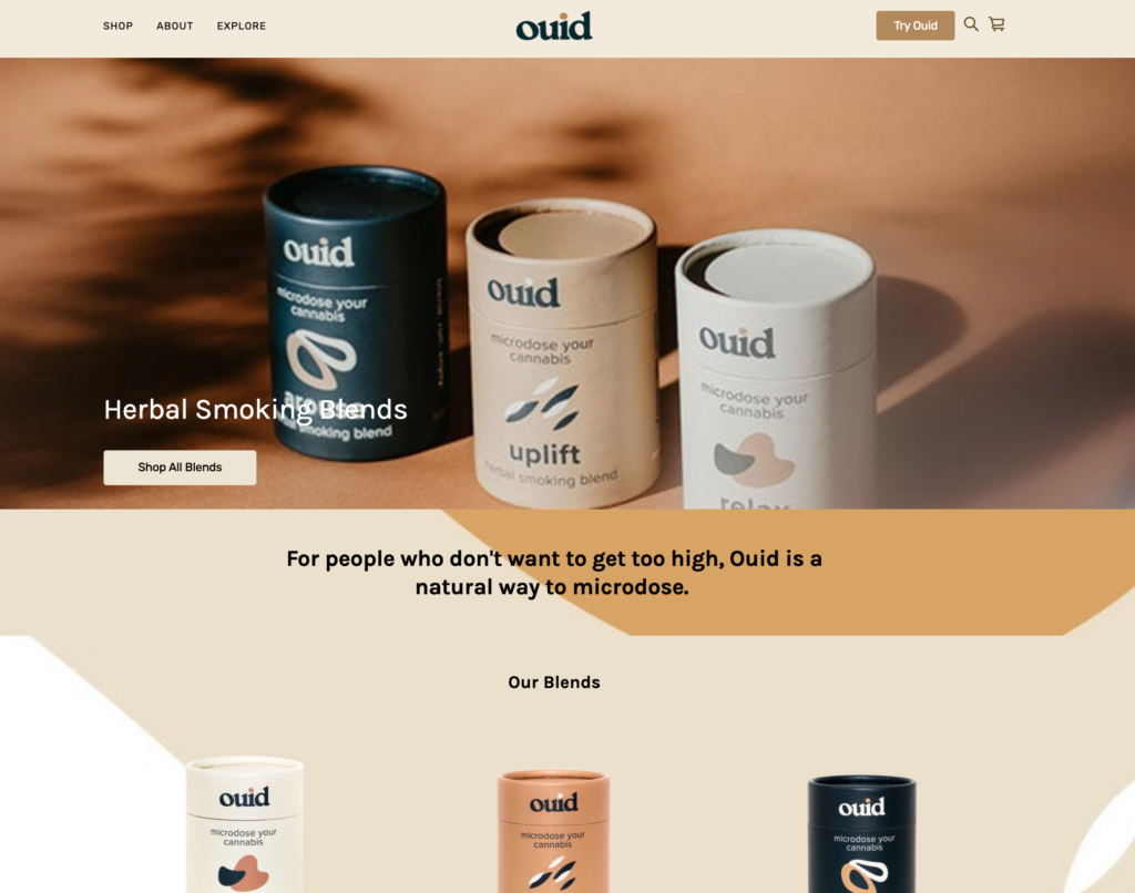 Brand website example using square online store